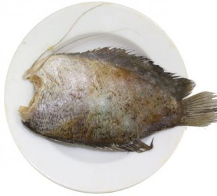 Dried Tilapia